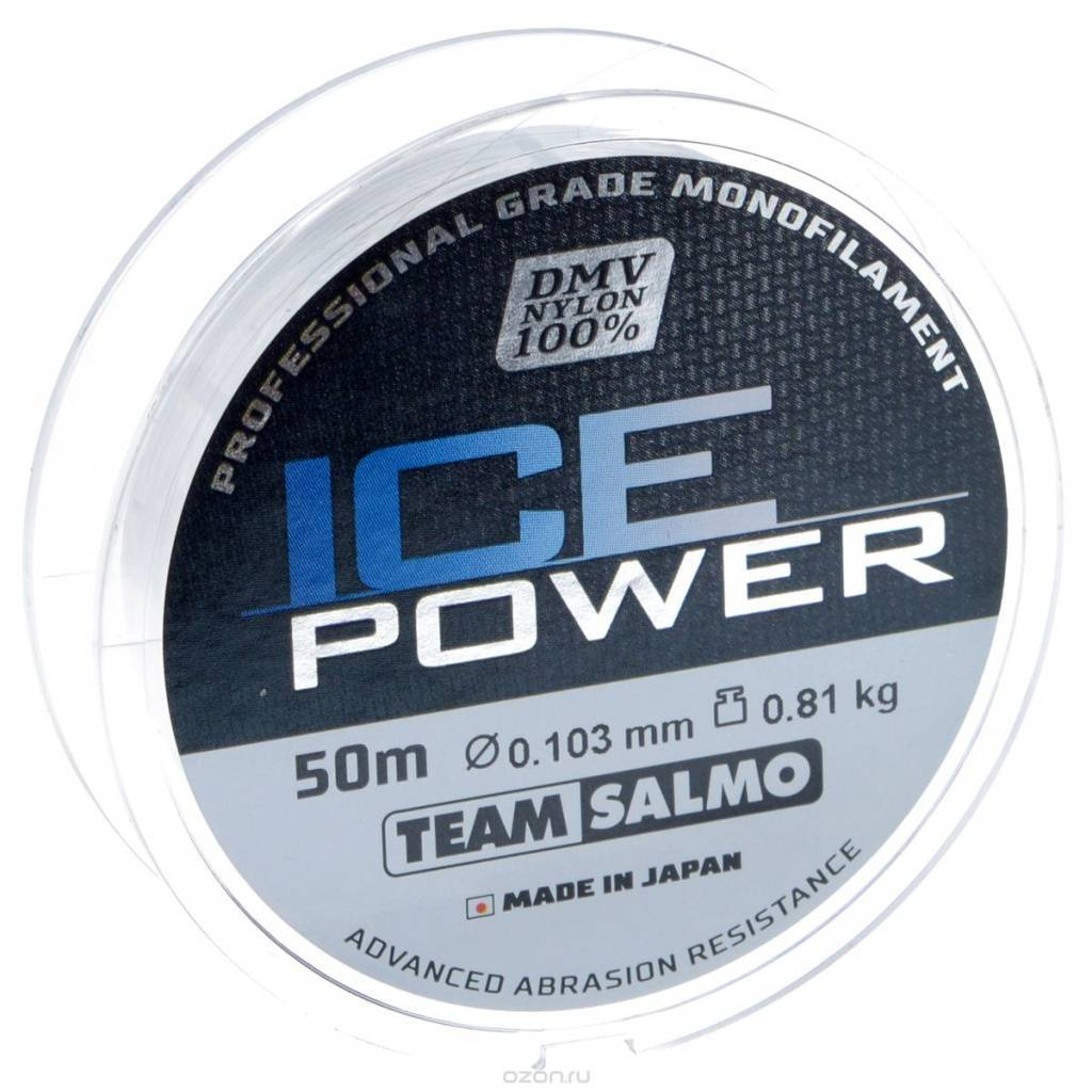 Salmo Ice Power